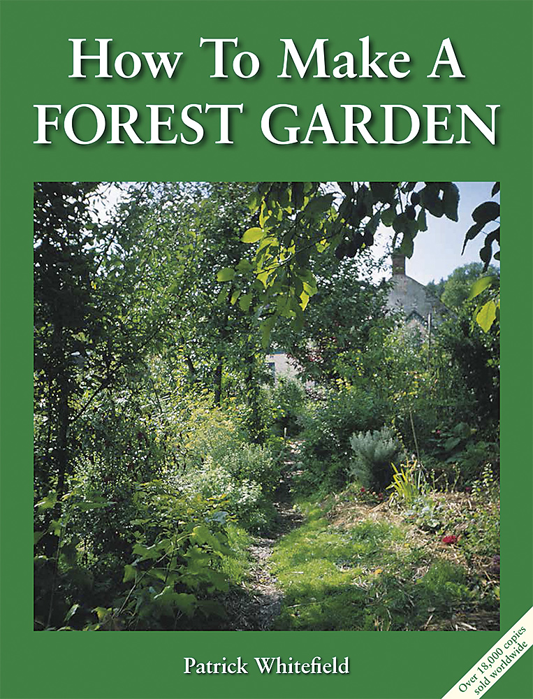 How-To-Make-A-Forest-Garden